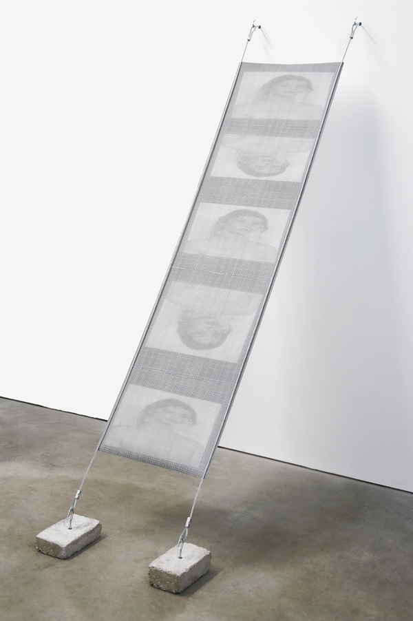 archival inkjet print of a continuous scan,<br>16 x 60 in, 2014